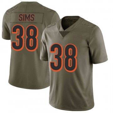 Youth Nike Cincinnati Bengals LeShaun Sims Green 2017 Salute to Service Jersey - Limited