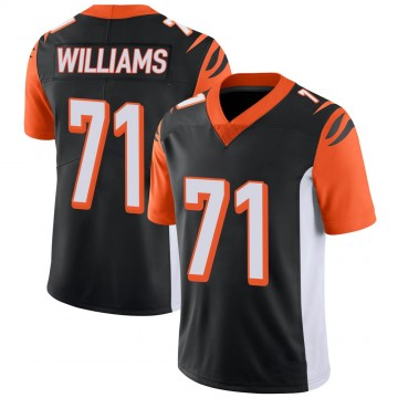Youth Nike Cincinnati Bengals Xavier Williams Black 100th Vapor Jersey - Limited